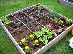 """Der neue Trend """"Easy Gardening"""" – keine unnötige Arbeit"""