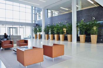 Schöner Eingangsbereich: Gepflegte Pflanzen in edlen Gefäßen schaffen das besondere Ambiente