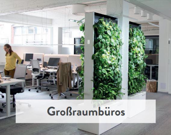Naava Natur Trenwand für Großraumbüros