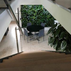 Pflanzenwand_Büro